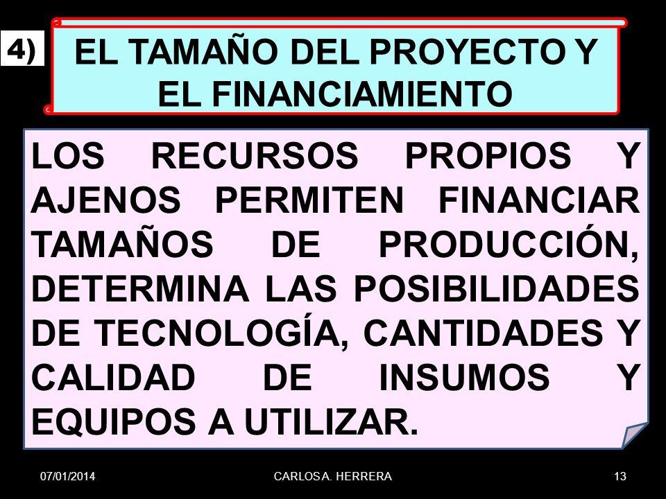 EL TAMAÑO DEL PROYECTO Y EL FINANCIAMIENTO