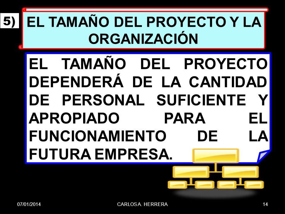 EL TAMAÑO DEL PROYECTO Y LA ORGANIZACIÓN
