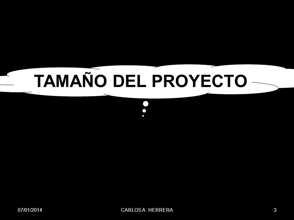 TAMAÑO DEL PROYECTO 24/03/2017 CARLOS A. HERRERA