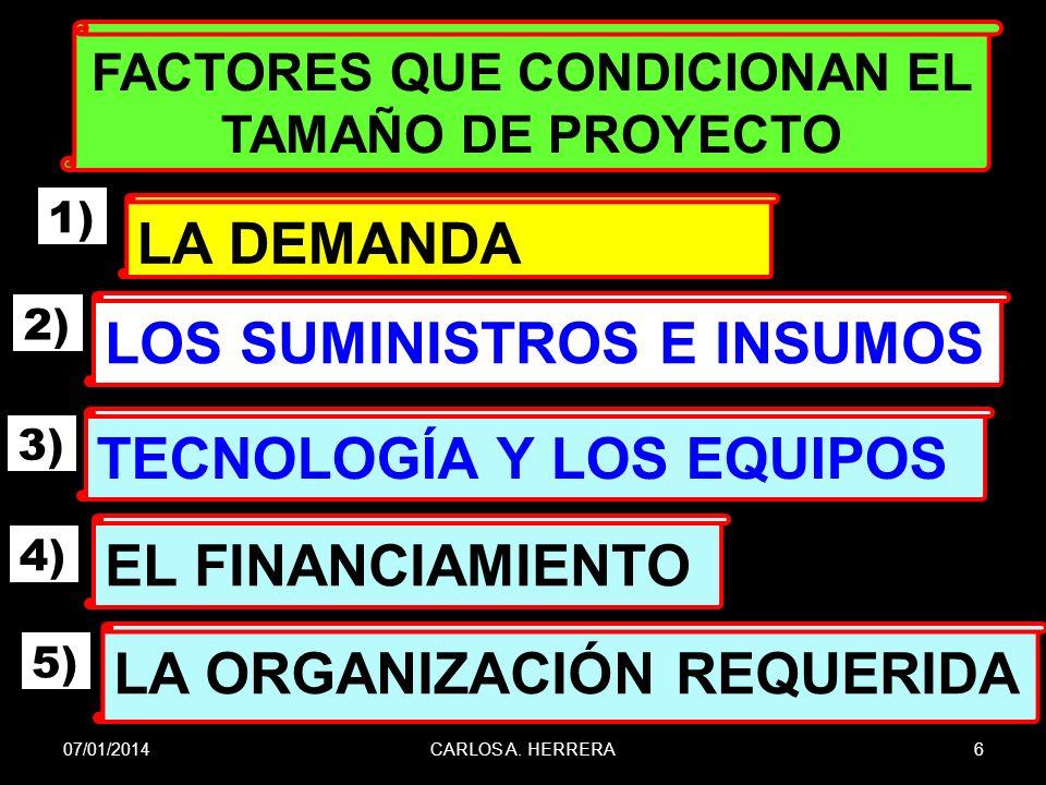 FACTORES QUE CONDICIONAN EL TAMAÑO DE PROYECTO