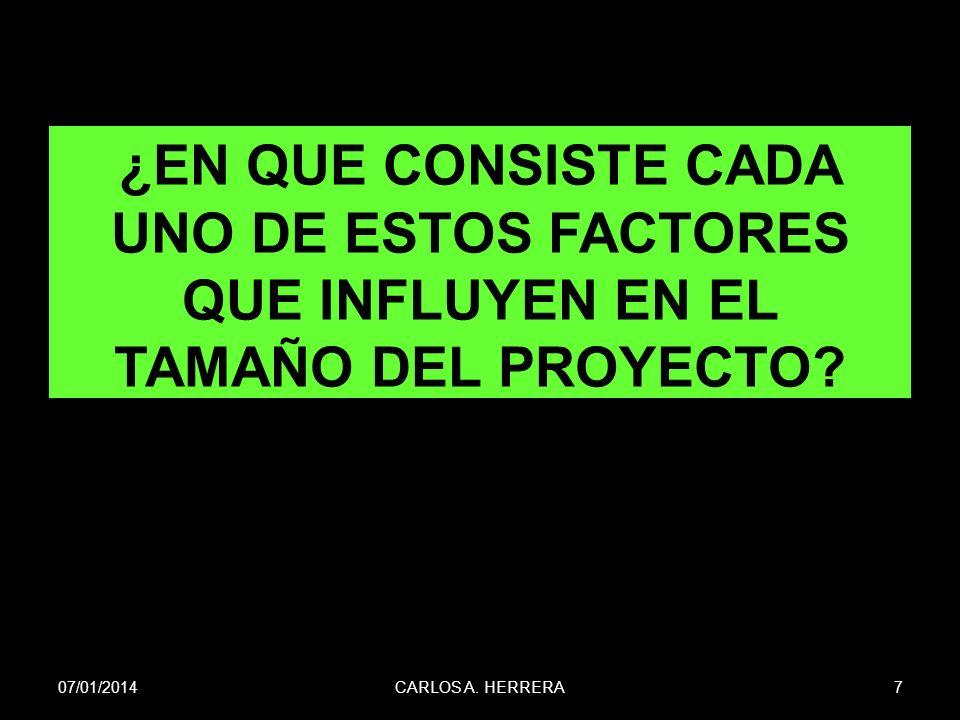 ¿EN QUE CONSISTE CADA UNO DE ESTOS FACTORES QUE INFLUYEN EN EL TAMAÑO DEL PROYECTO