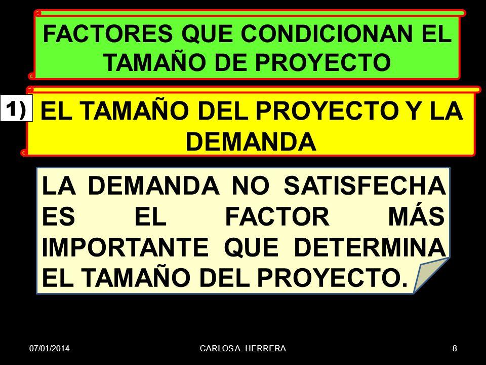 EL TAMAÑO DEL PROYECTO Y LA DEMANDA