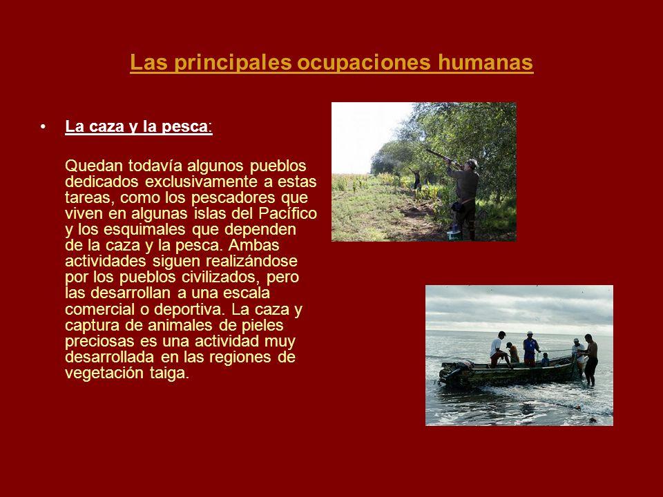 Las principales ocupaciones humanas