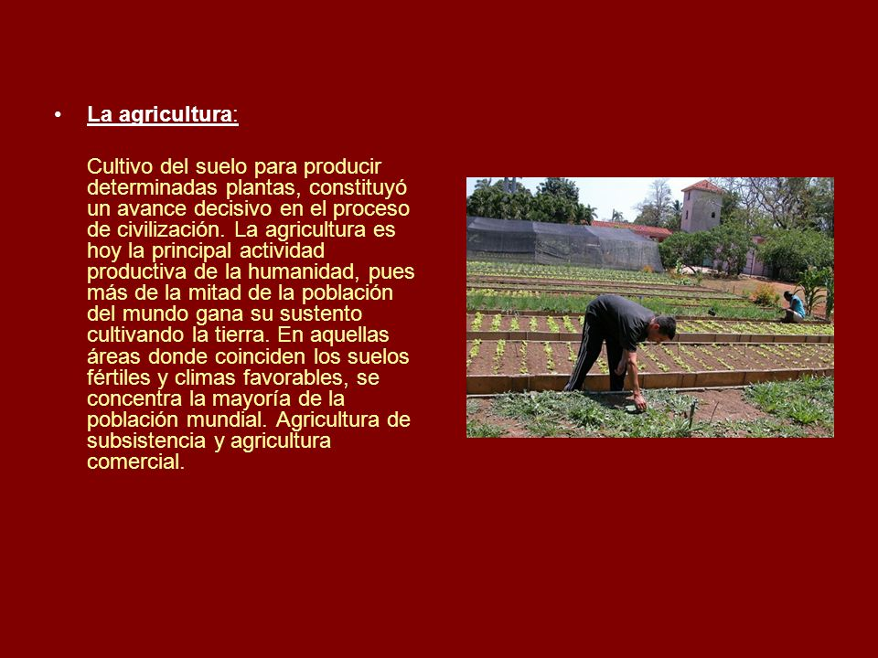 La agricultura: