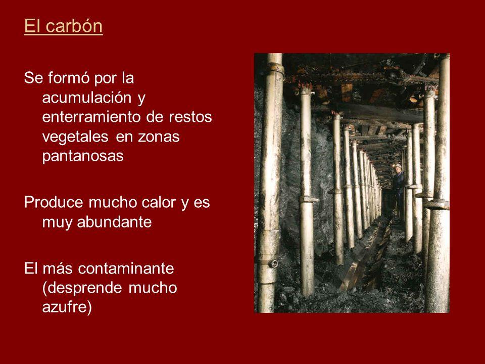 El carbón Se formó por la acumulación y enterramiento de restos vegetales en zonas pantanosas. Produce mucho calor y es muy abundante.