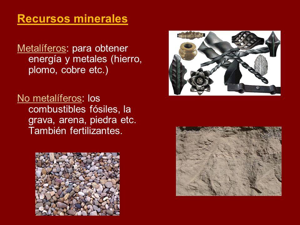 Recursos mineralesMetalíferos: para obtener energía y metales (hierro, plomo, cobre etc.)