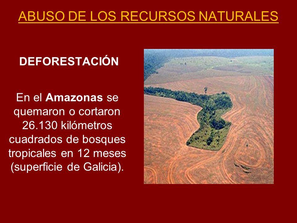 ABUSO DE LOS RECURSOS NATURALES