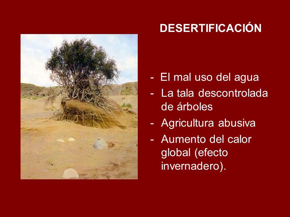 DESERTIFICACIÓN- El mal uso del agua.La tala descontrolada de árboles.