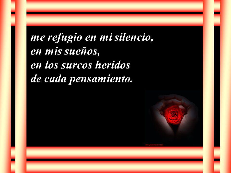 me refugio en mi silencio,