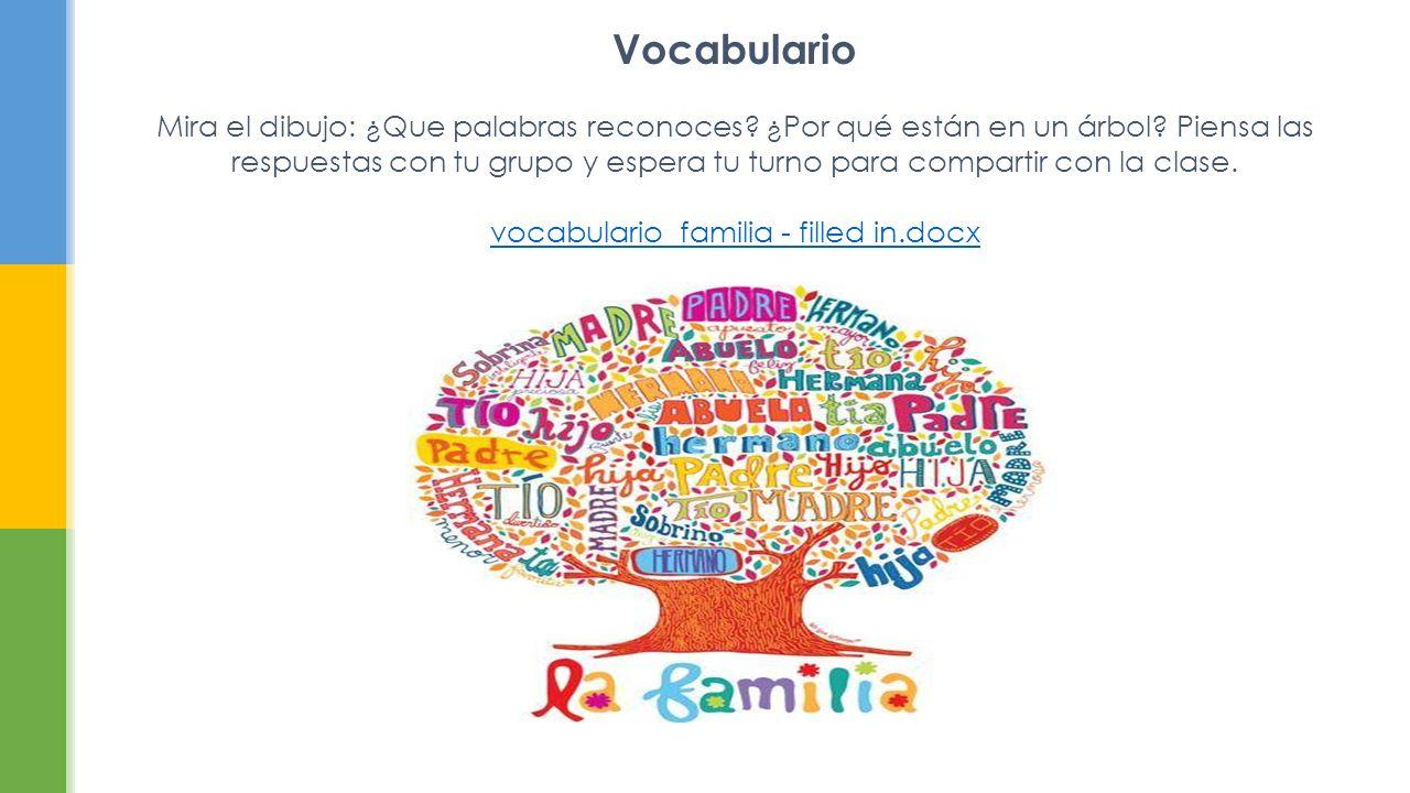 Vocabulario Mira el dibujo: ¿Que palabras reconoces