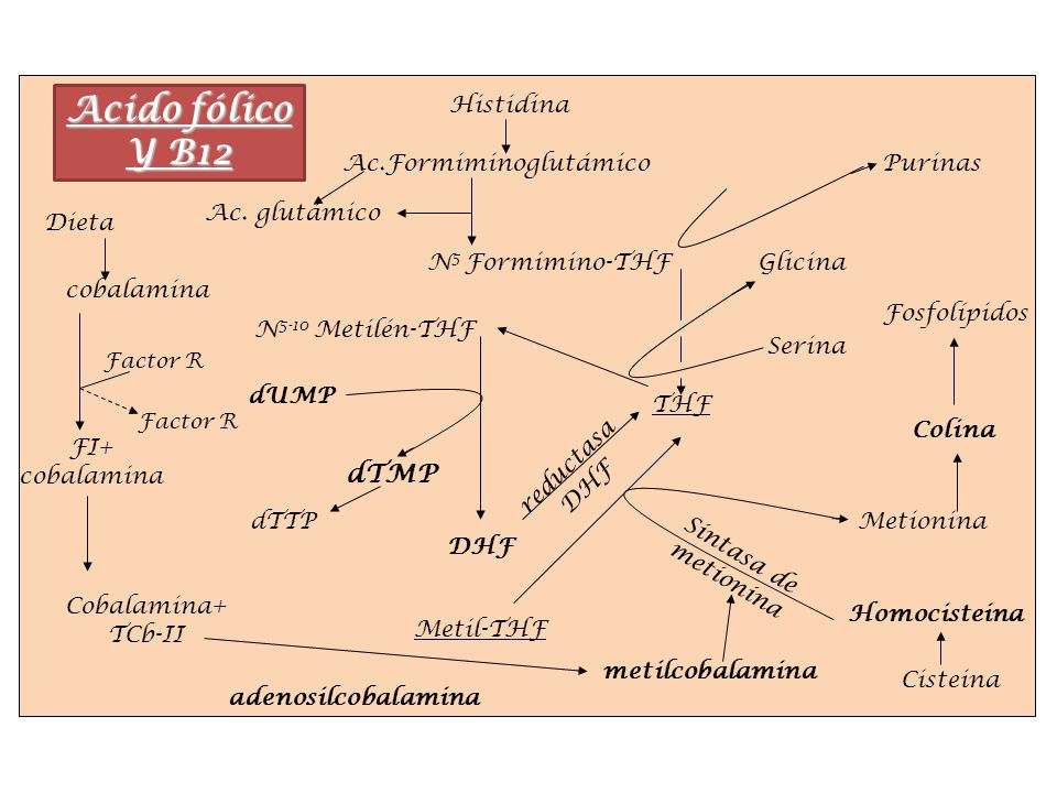 Ac.Formiminoglutámico