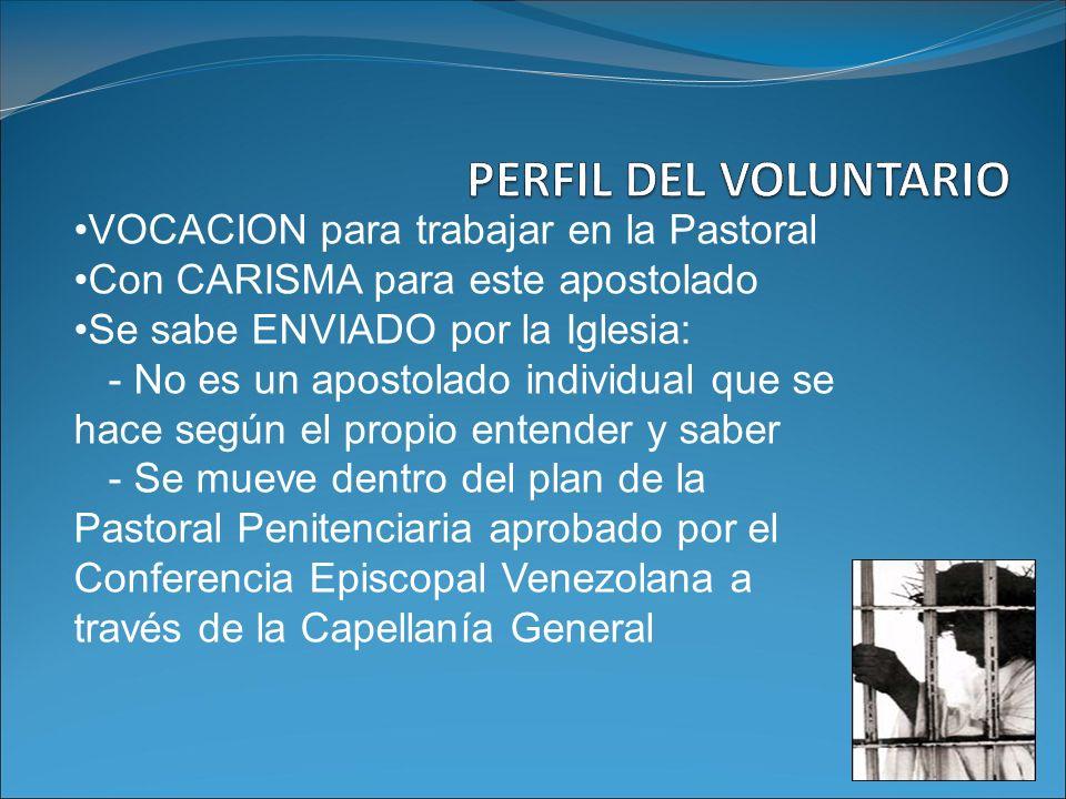 PERFIL DEL VOLUNTARIO VOCACION para trabajar en la Pastoral