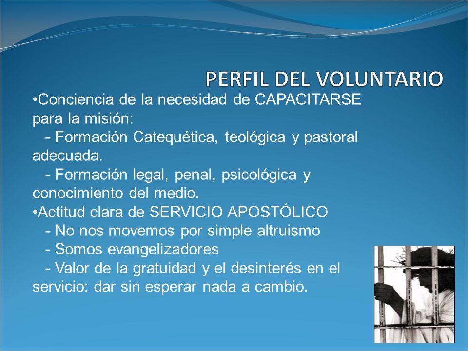 PERFIL DEL VOLUNTARIO Conciencia de la necesidad de CAPACITARSE para la misión: - Formación Catequética, teológica y pastoral adecuada.