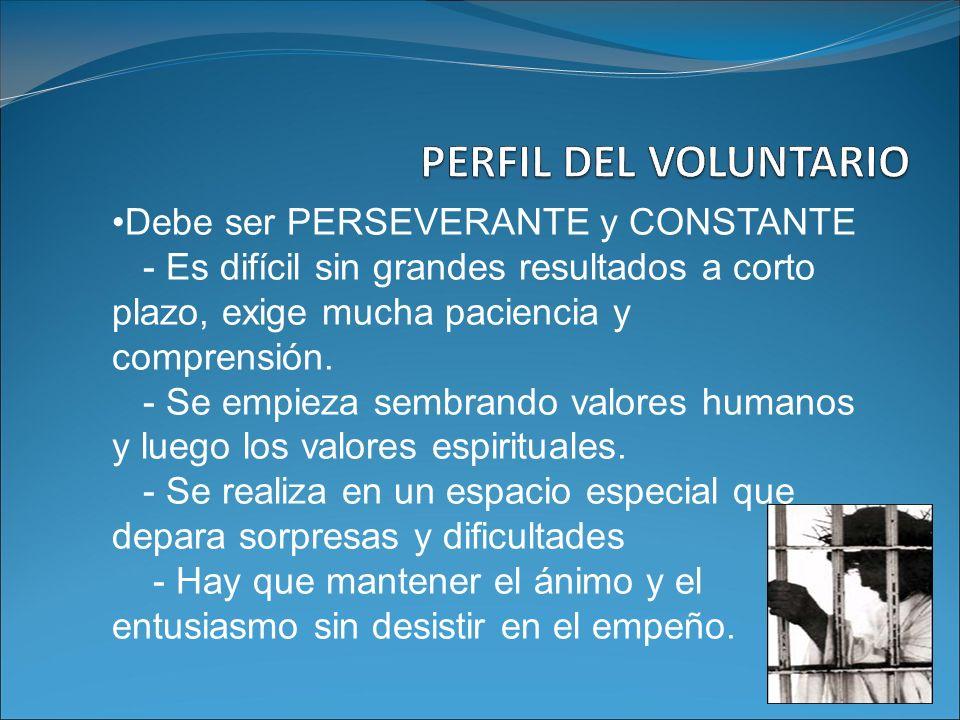 PERFIL DEL VOLUNTARIO Debe ser PERSEVERANTE y CONSTANTE
