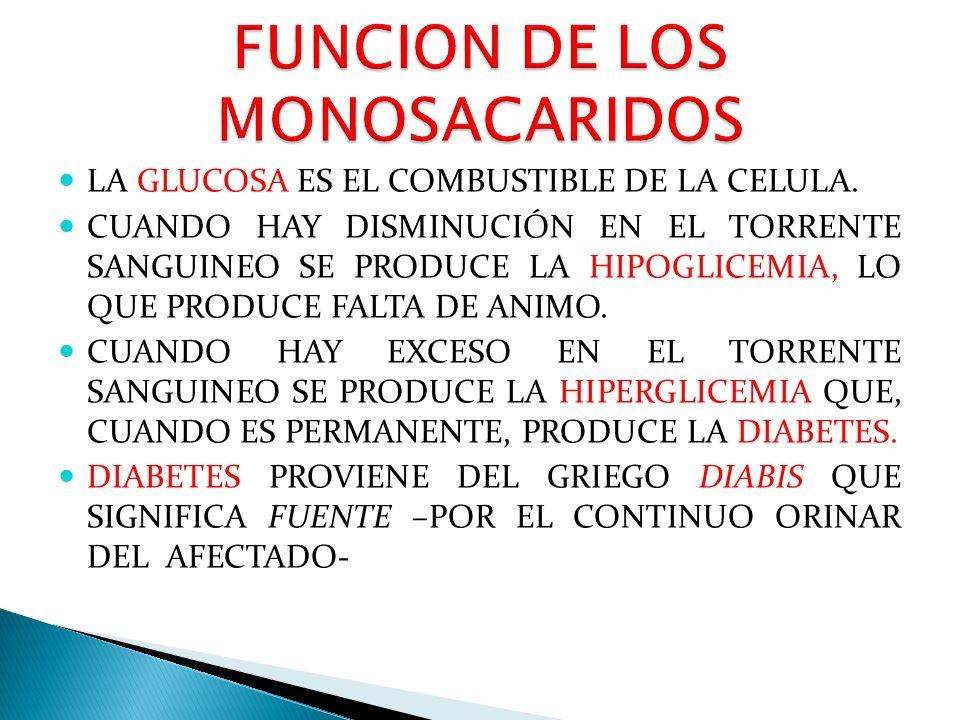 BIOMOLÉCULAS Lic. José Pinela Castro. - ppt video online