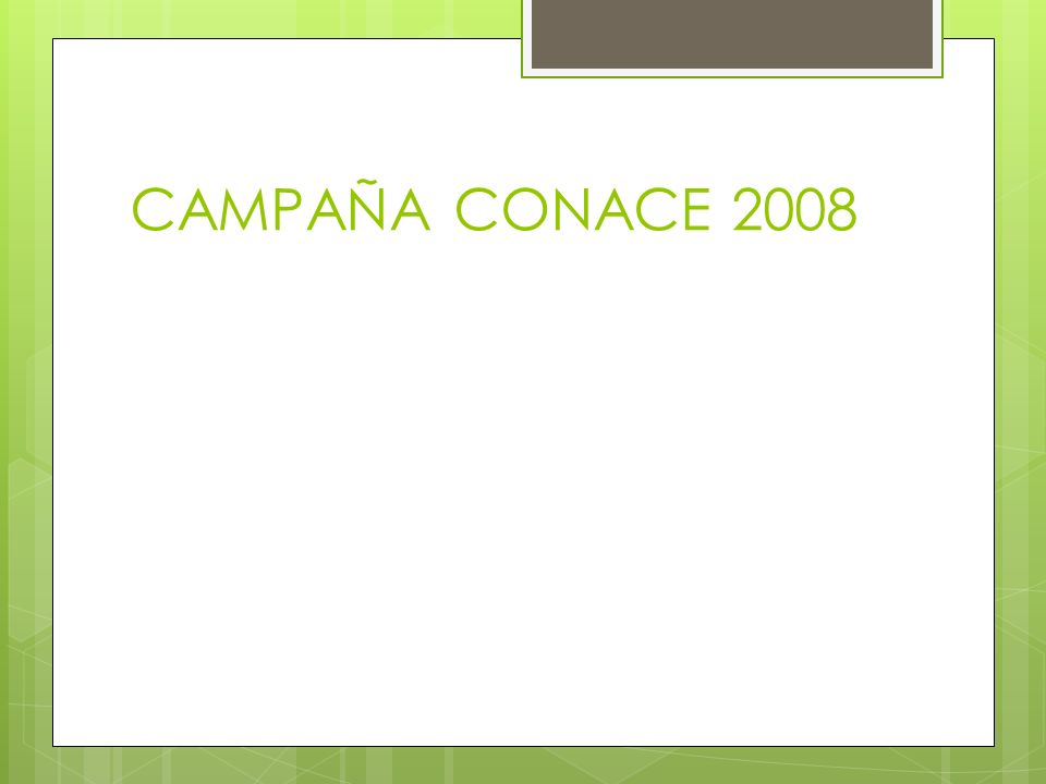 CAMPAÑA CONACE 2008