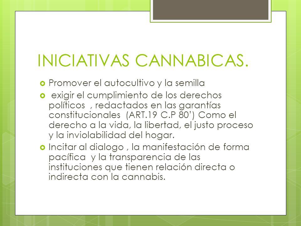 INICIATIVAS CANNABICAS.