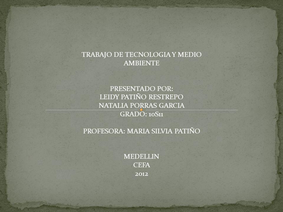 NATALIA PORRAS GARCIA GRADO: 10S11 PROFESORA: MARIA SILVIA PATIÑO