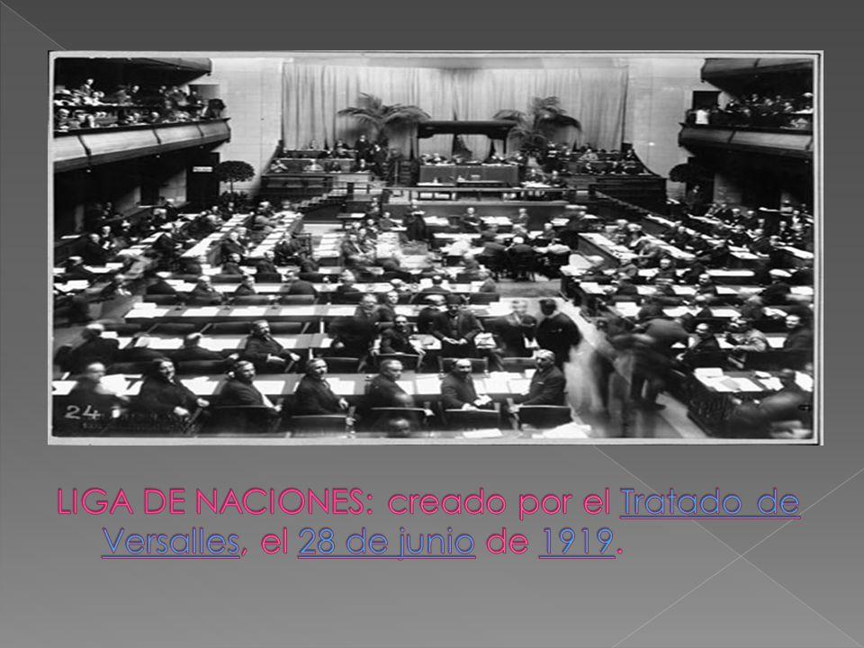 Las asambleas han existido como forma de democracia, ya que el derecho internacional no puede ser impuesto y deber ser democratico