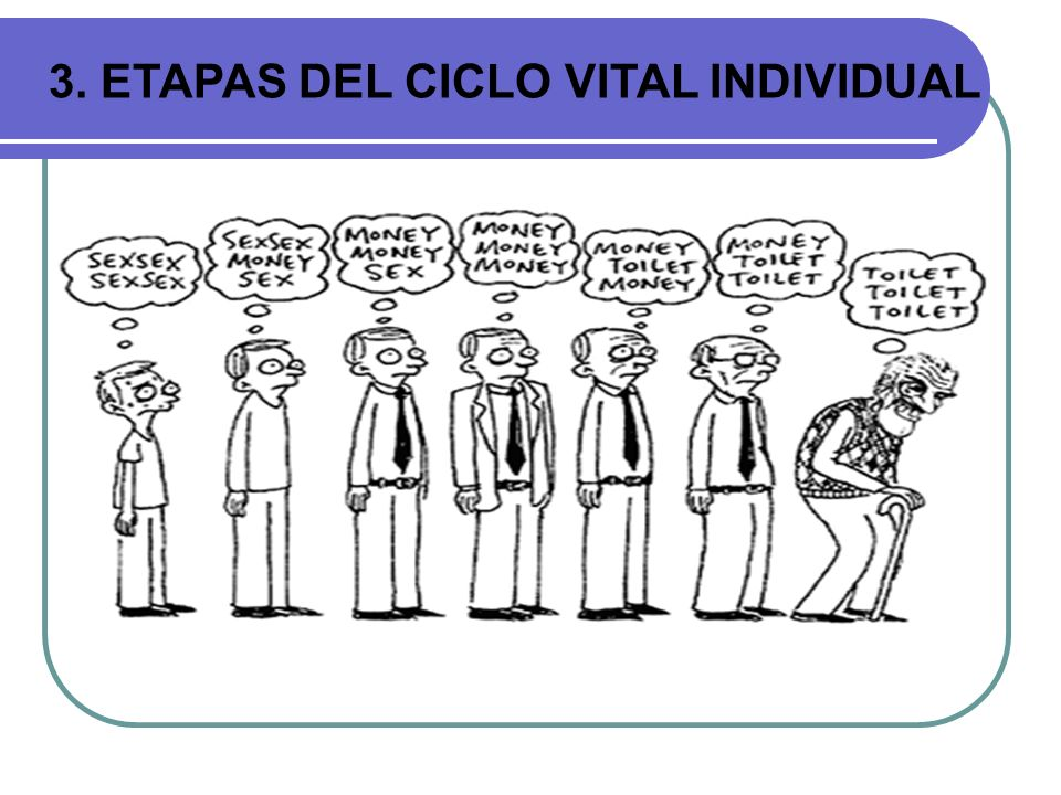 3. ETAPAS DEL CICLO VITAL INDIVIDUAL