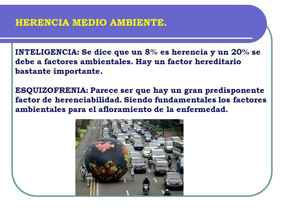 HERENCIA MEDIO AMBIENTE.