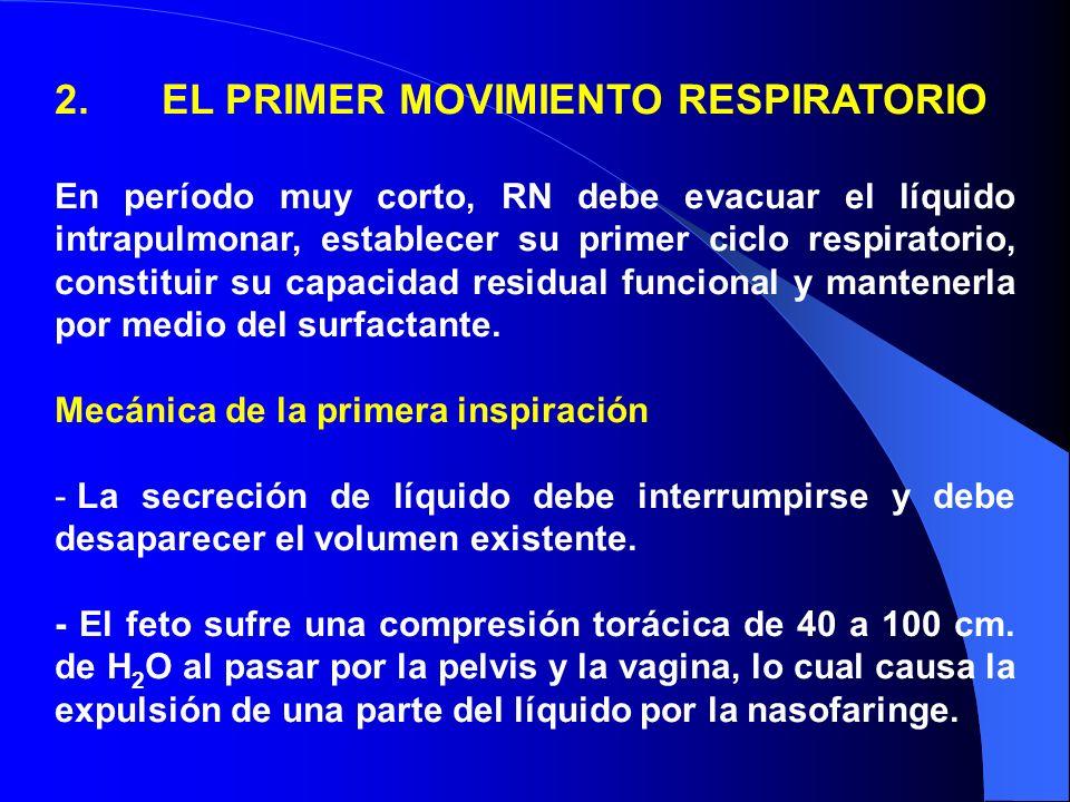 2. EL PRIMER MOVIMIENTO RESPIRATORIO