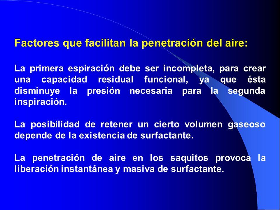 Factores que facilitan la penetración del aire: