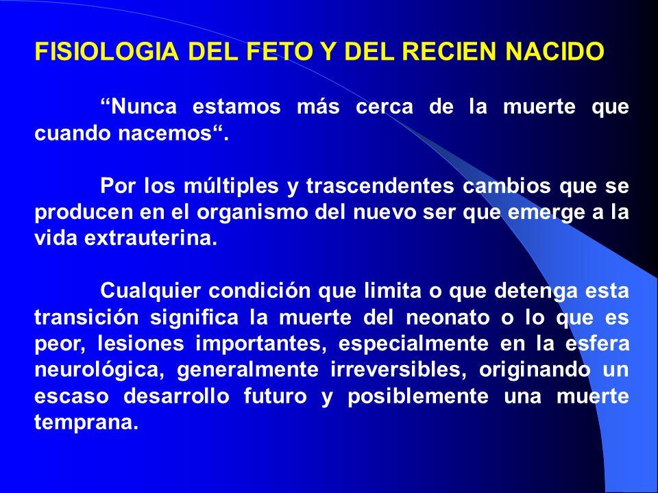 FISIOLOGIA DEL FETO Y DEL RECIEN NACIDO