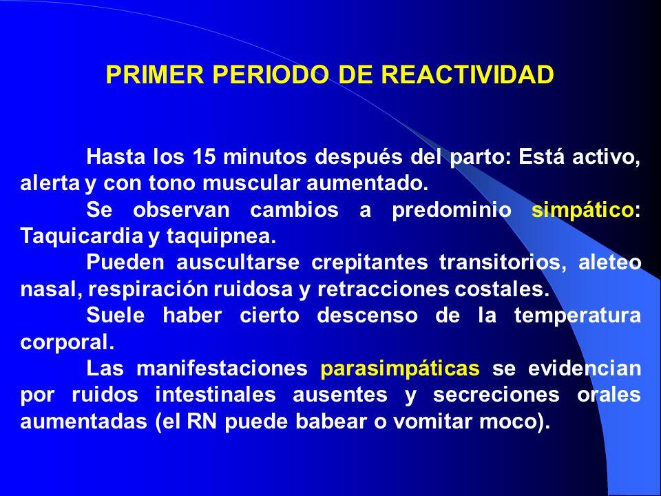 PRIMER PERIODO DE REACTIVIDAD