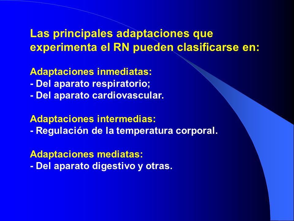 Las principales adaptaciones que experimenta el RN pueden clasificarse en: