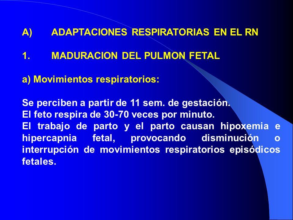 A) ADAPTACIONES RESPIRATORIAS EN EL RN