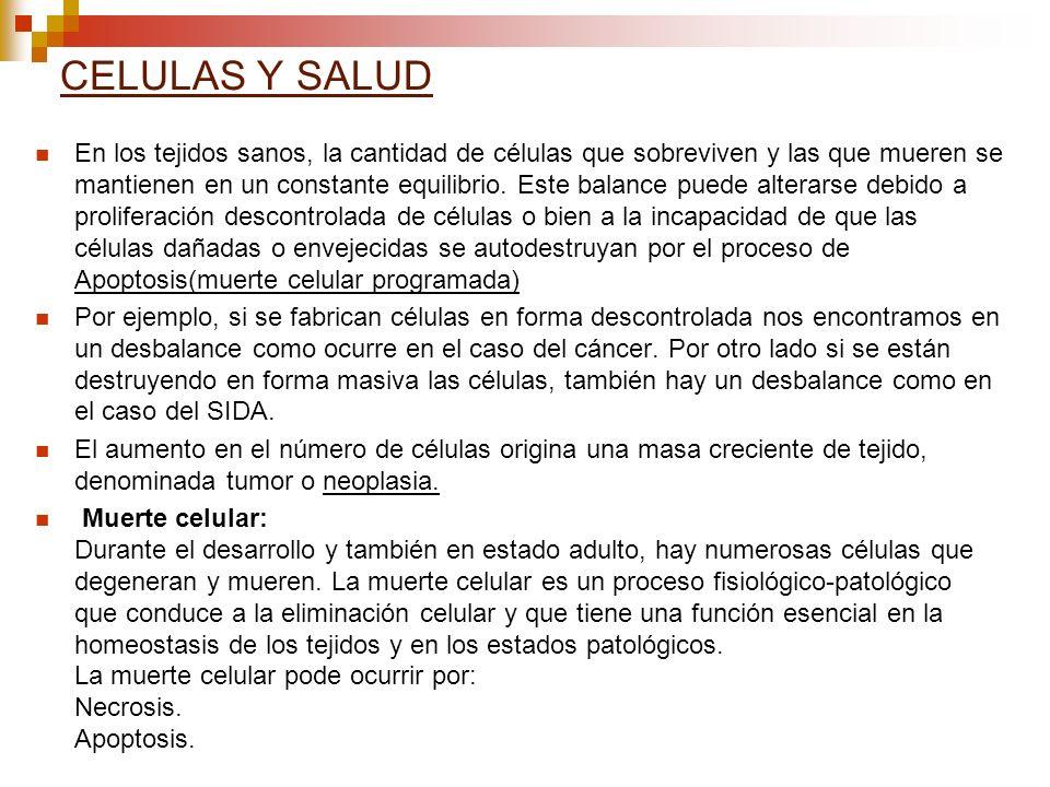 CELULAS Y SALUD