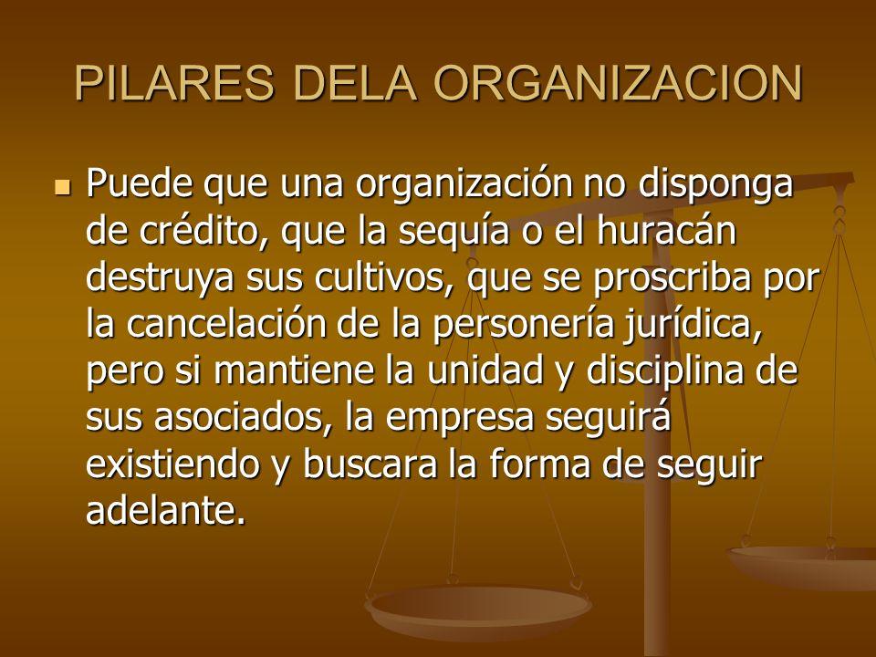 PILARES DELA ORGANIZACION