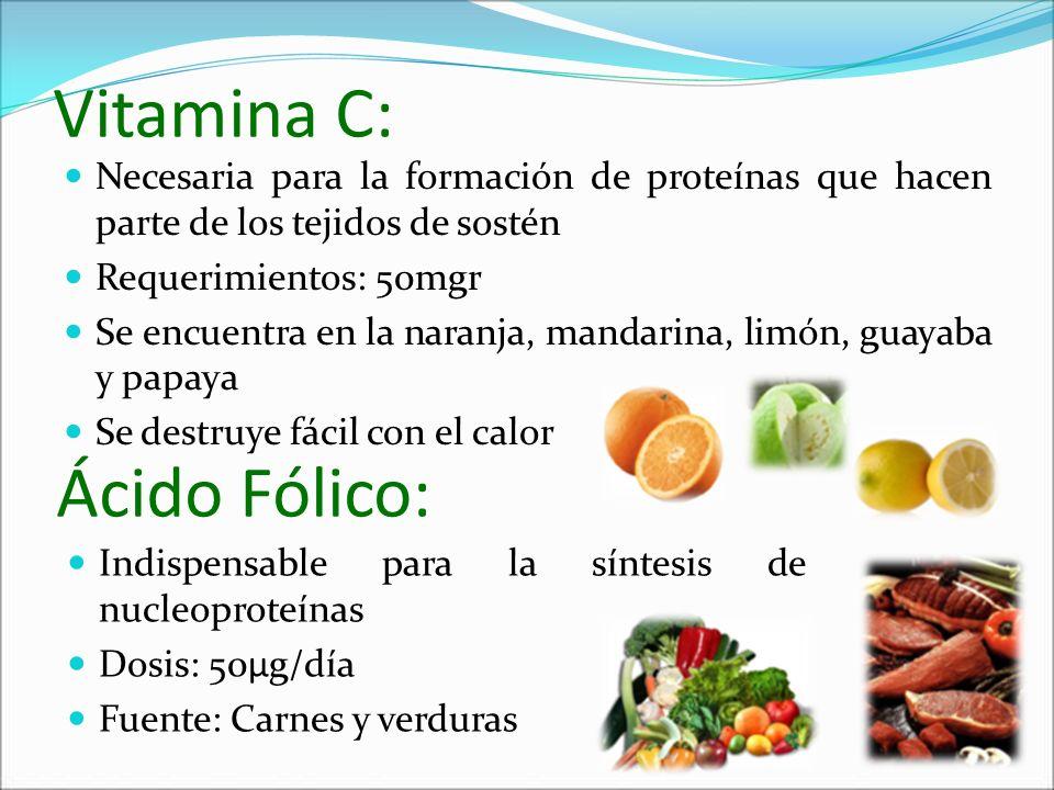 Vitamina C: Ácido Fólico: