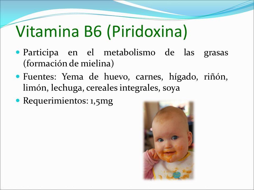 Vitamina B6 (Piridoxina)