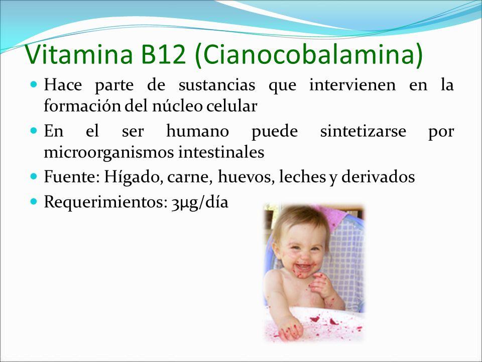 Vitamina B12 (Cianocobalamina)