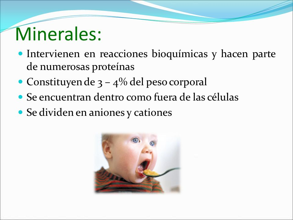 Minerales:Intervienen en reacciones bioquímicas y hacen parte de numerosas proteínas. Constituyen de 3 – 4% del peso corporal.