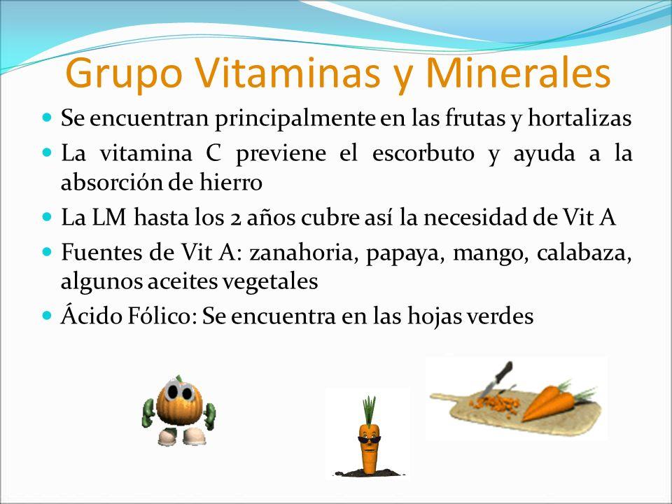 Grupo Vitaminas y Minerales