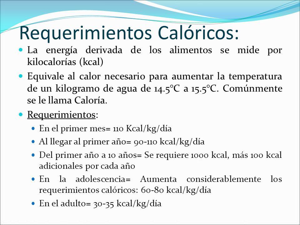 Requerimientos Calóricos: