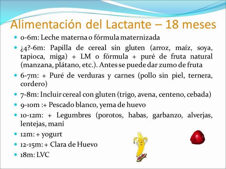 Alimentación del Lactante – 18 meses