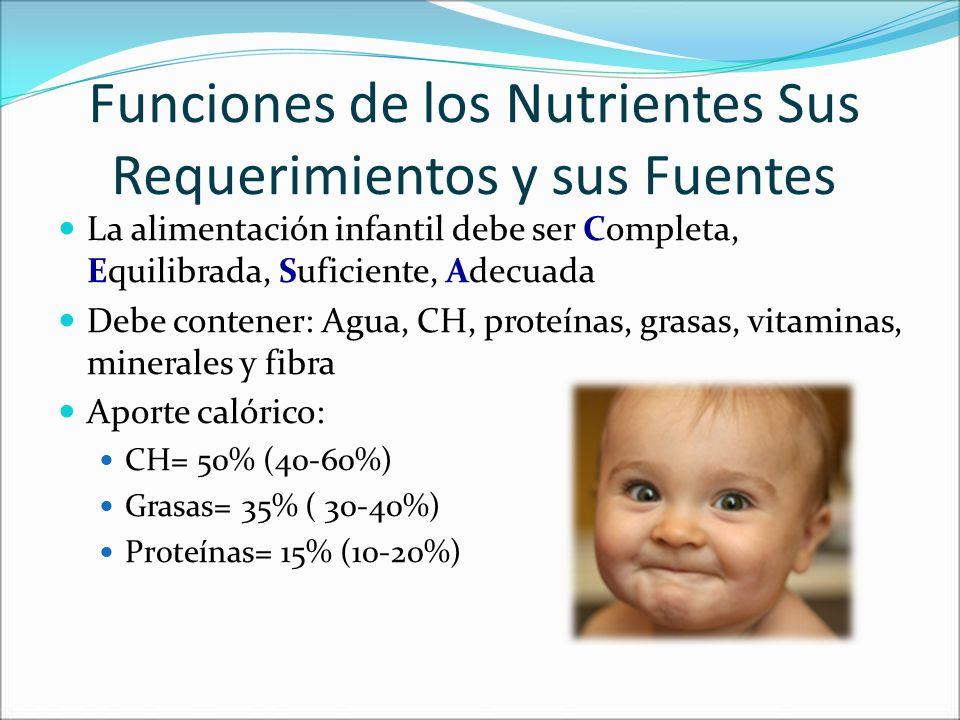 Funciones de los Nutrientes Sus Requerimientos y sus Fuentes