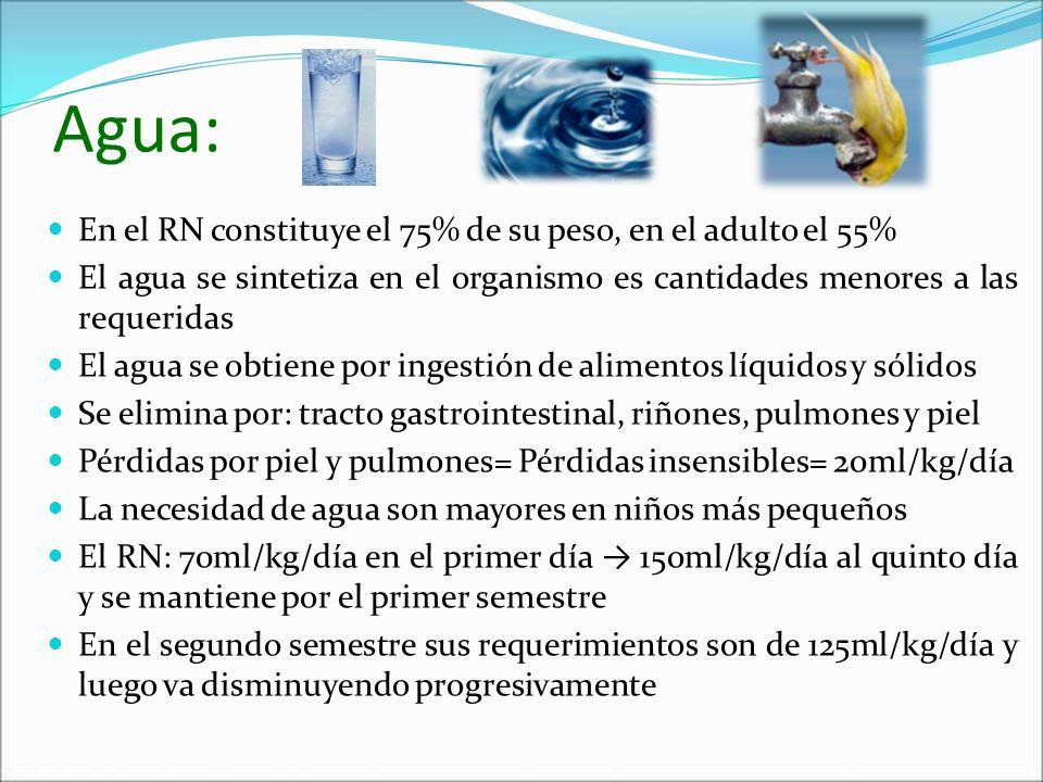 Agua: En el RN constituye el 75% de su peso, en el adulto el 55%