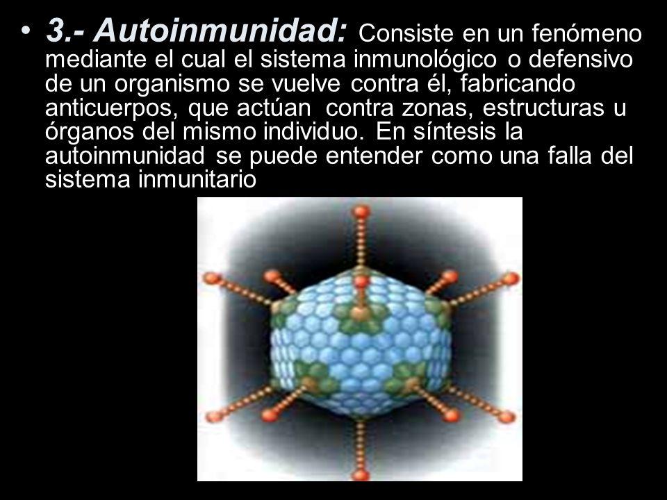 3.- Autoinmunidad: Consiste en un fenómeno mediante el cual el sistema inmunológico o defensivo de un organismo se vuelve contra él, fabricando anticuerpos, que actúan contra zonas, estructuras u órganos del mismo individuo.