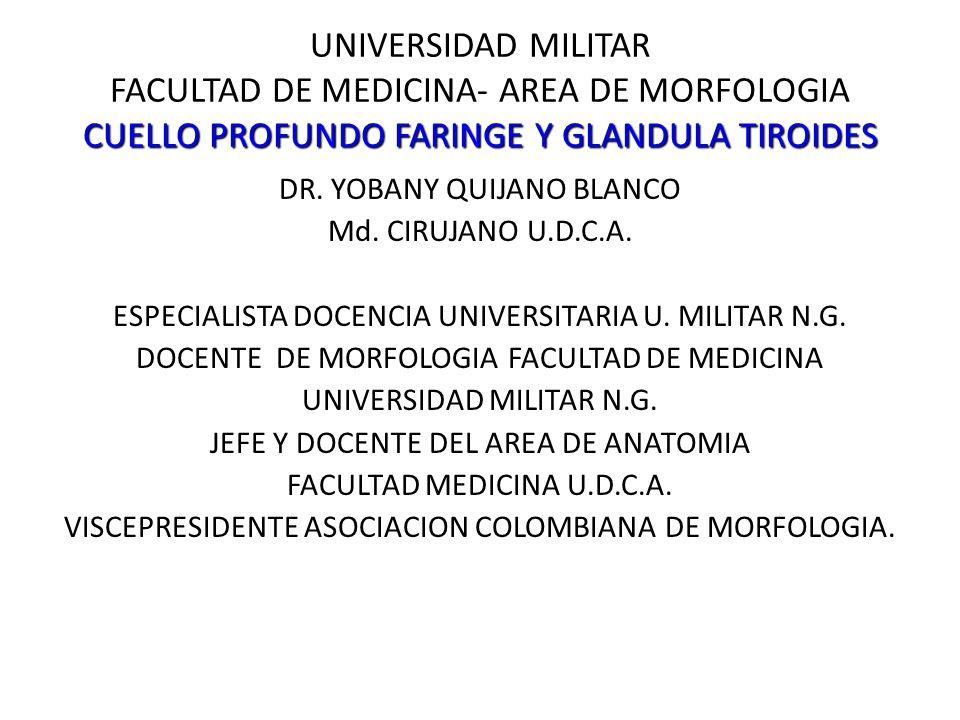 UNIVERSIDAD MILITAR FACULTAD DE MEDICINA- AREA DE MORFOLOGIA CUELLO PROFUNDO FARINGE Y GLANDULA TIROIDES