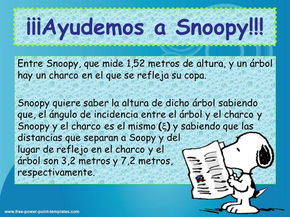 ¡¡¡Ayudemos a Snoopy!!!