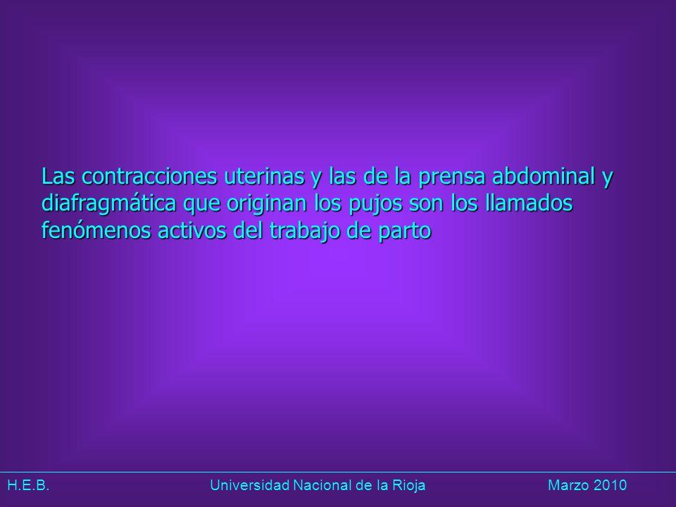 Las contracciones uterinas y las de la prensa abdominal y diafragmática que originan los pujos son los llamados fenómenos activos del trabajo de parto