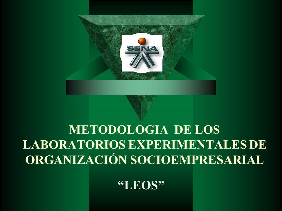 METODOLOGIA DE LOS LABORATORIOS EXPERIMENTALES DE ORGANIZACIÓN SOCIOEMPRESARIAL