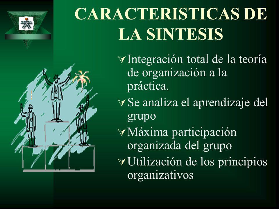 CARACTERISTICAS DE LA SINTESIS