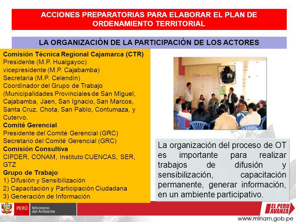 LA ORGANIZACIÓN DE LA PARTICIPACIÓN DE LOS ACTORES