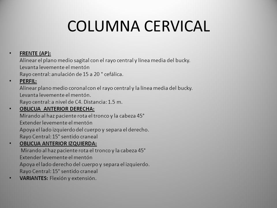COLUMNA CERVICAL FRENTE (AP):